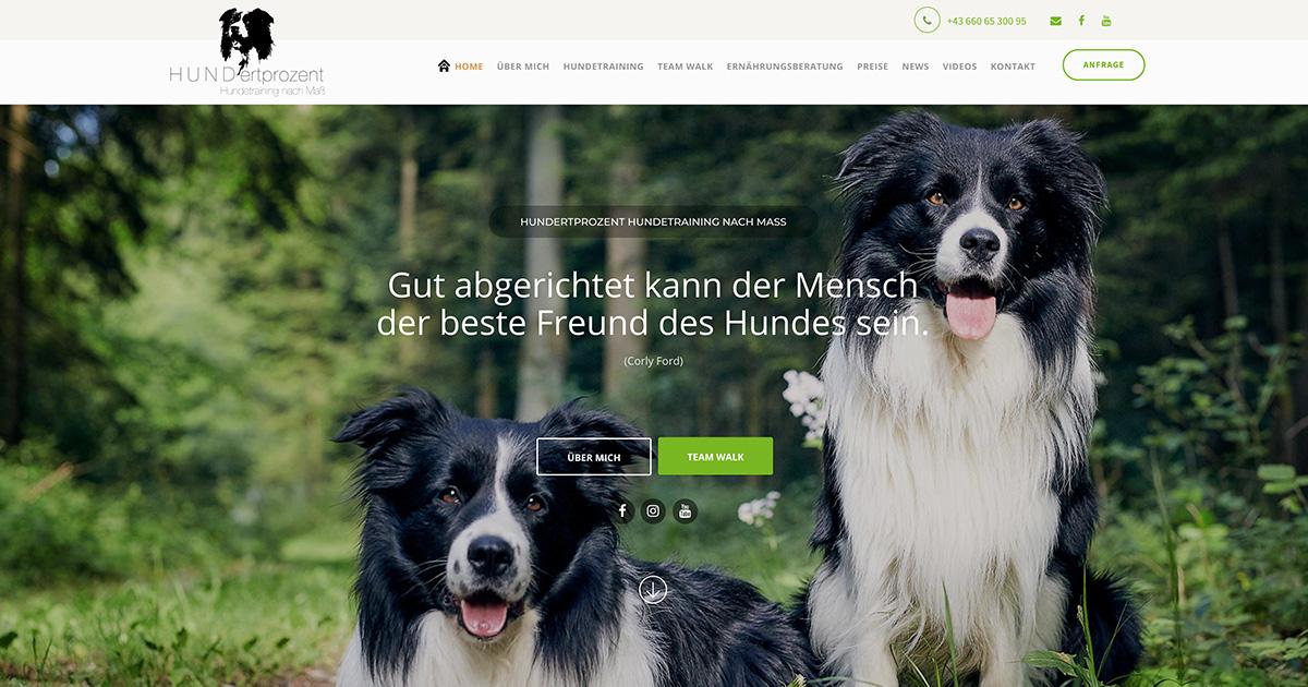 Hundertprozent Hundetraining
